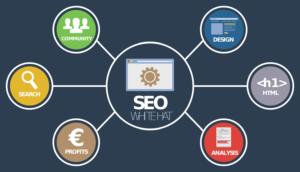 Indianapolis SEO Company: Tips for Finding the Best One